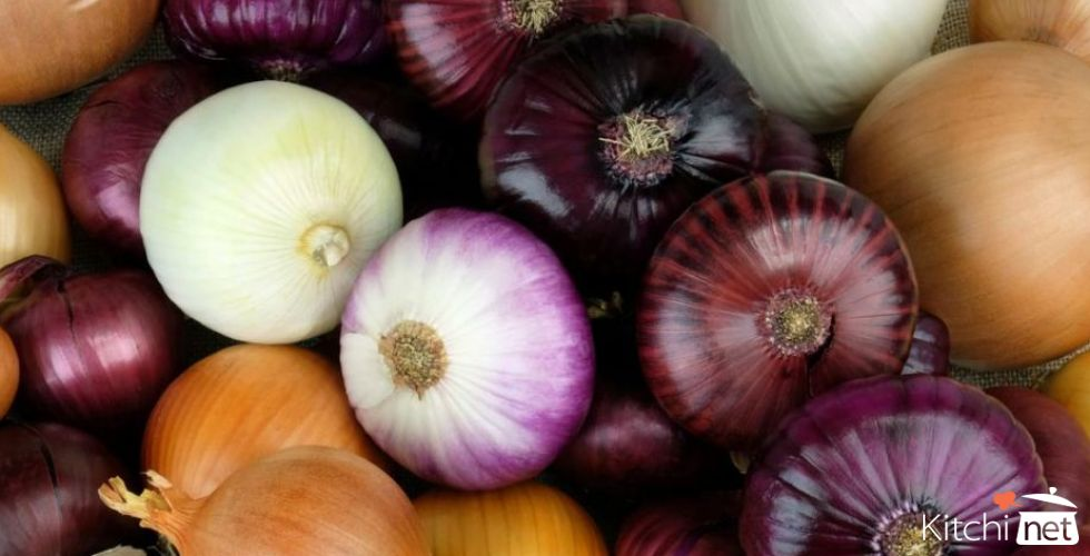 The Smelly Onion Benefits