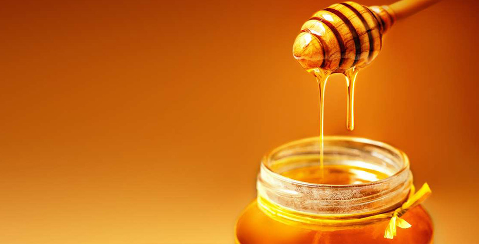 Benefits of Oak Honey